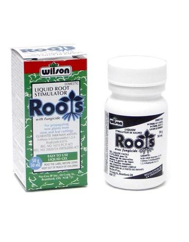Hormone d 39 enracimenent avec fongicide wilson nos for Produit de jardinage